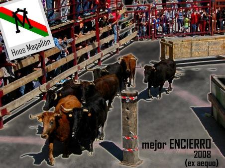 Mejor ENCIERRO 2008 (1)