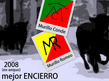 Mejor ENCIERRO 2008 (2)