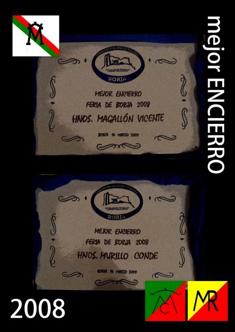 Mejor ENCIERRO 2008 (3)