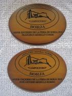 Mejor ENCIERRO 2010 (2)