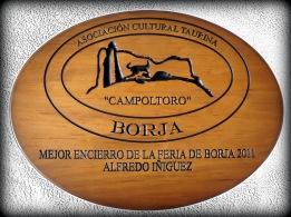 Mejor ENCIERRO 2011 (2)