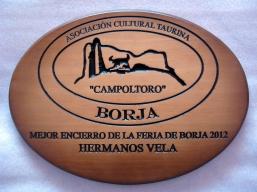 Mejor Encierro 2012 (2)
