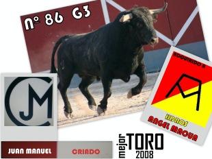 Mejor TORO 2008 (1)