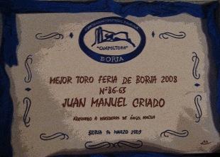 Mejor TORO 2008 (2)