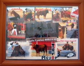 Mejor TORO 2009 (2)