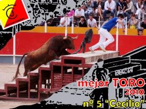 Mejor TORO 2010 (1)