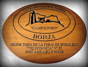 Mejor TORO 2011 (2)