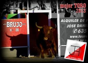 Mejor TORO 2013 (1)