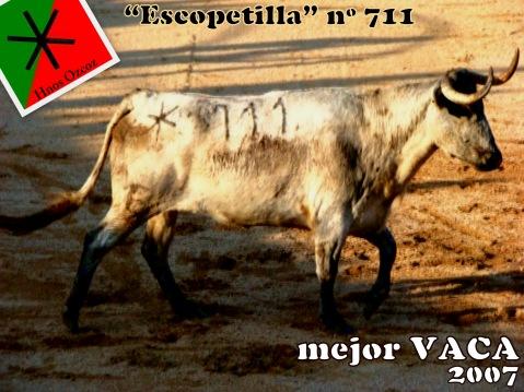 Mejor VACA 2007 (1)