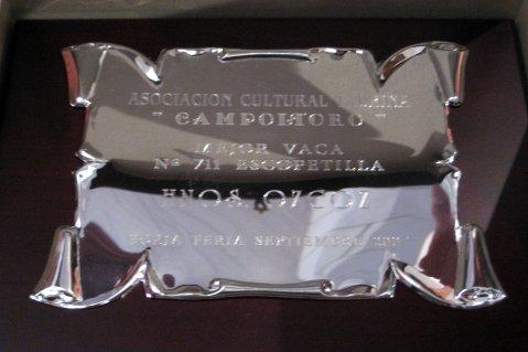 Mejor VACA 2007 (2)