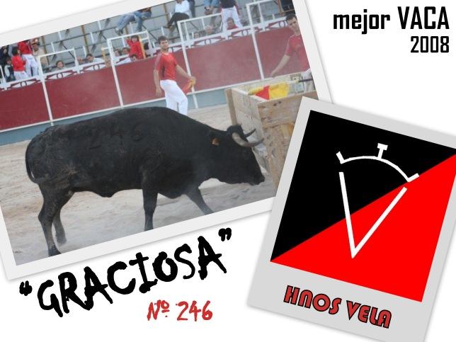 Mejor VACA 2008 (1)