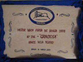 Mejor VACA 2008 (2)
