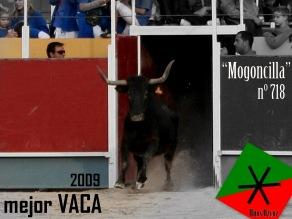 Mejor VACA 2009 (1)