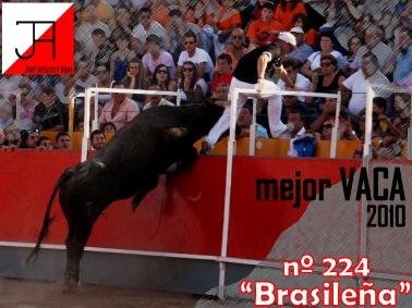 Mejor VACA 2010 (1)