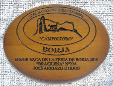 Mejor VACA 2010 (2)