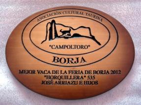 Mejor VACA 2012 (2)