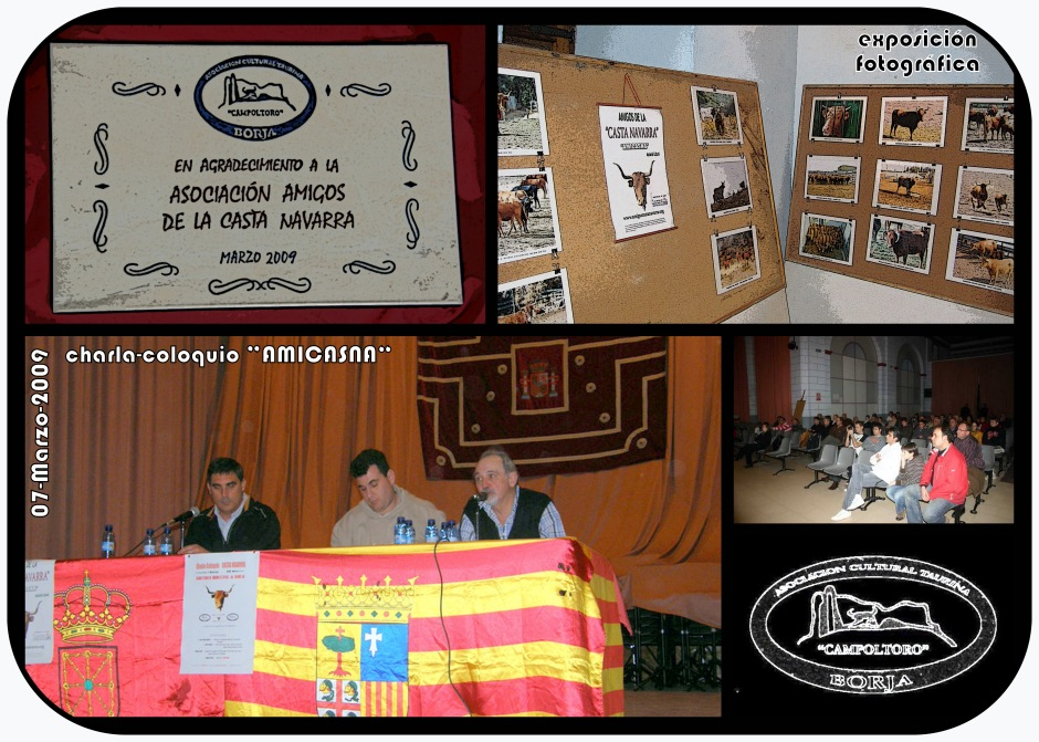 Charla Amicasna 13 (Collage)