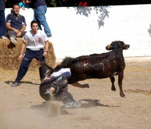 Jornadas Camperas 43