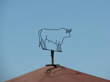 Visita ganadería Los Maños (2)