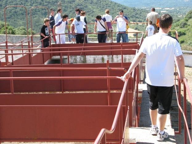 Visita ganadería Los Maños (5)