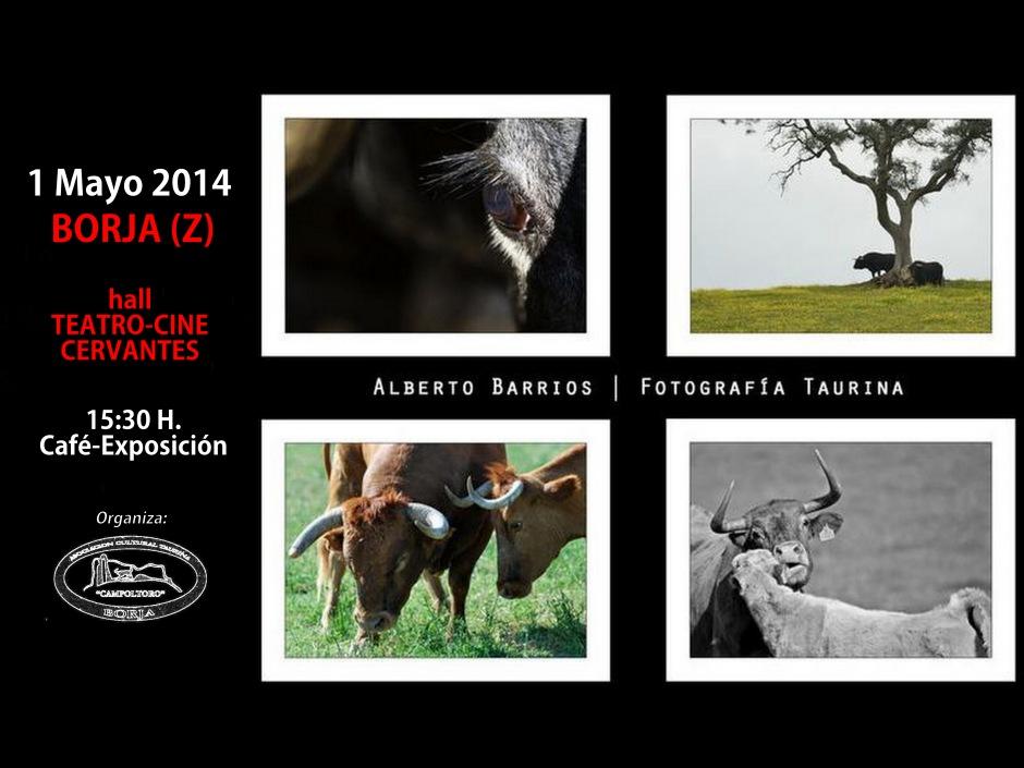 Exposición Alberto Barrios 1 (Cartel)