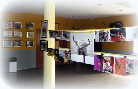 Exposición Alberto Barrios 2